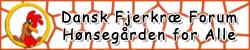 fjerkrae-DFF