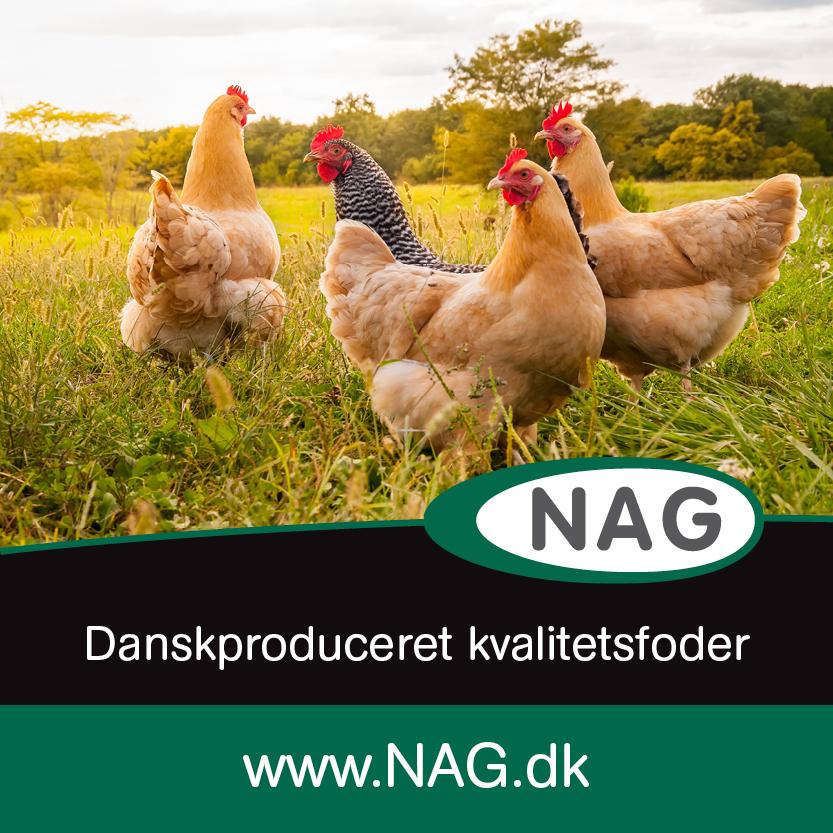 NAG.DK