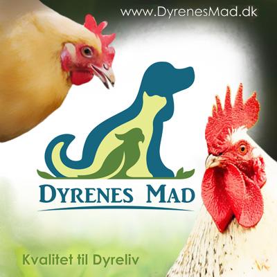 Dyrenes Mad